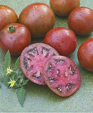 Black Prince Heirloom Tomato