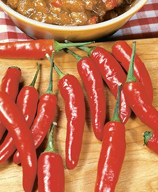 Chili Red Hot Pepper