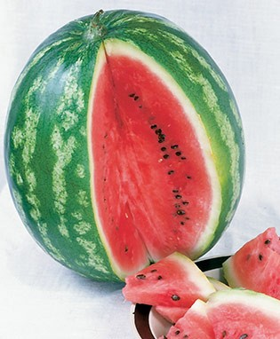 Icebox Watermelon