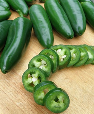 Mammoth Jalapeno Hot Pepper