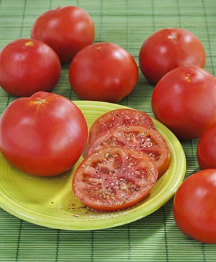 Marglobe Heirloom Tomato